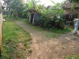 Tanah Dijual Di Cikarang Baru Jerapah Cocok untuk investasi